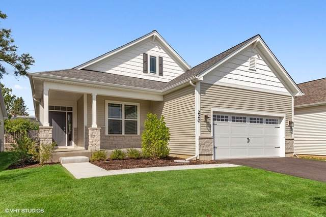 220 Sunset Lane, Addison, IL 60101 (MLS #10521261) :: Property Consultants Realty