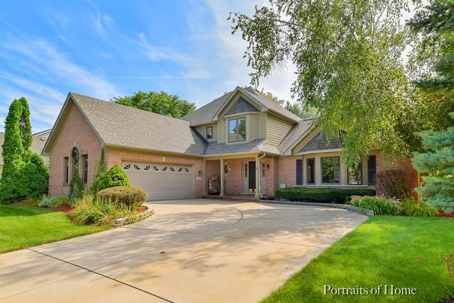 2304 Big Woods Drive, Batavia, IL 60510 (MLS #10521402) :: O'Neil Property Group