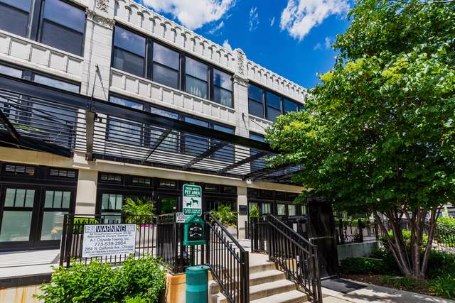 1110 W 15th Street #319, Chicago, IL 60608 (MLS #10521522) :: Littlefield Group