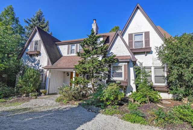 942 N Madison Street, Hinsdale, IL 60521 (MLS #10521544) :: John Lyons Real Estate