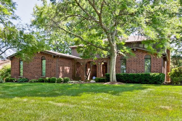 2 Robert Court, Hawthorn Woods, IL 60047 (MLS #10521549) :: Helen Oliveri Real Estate