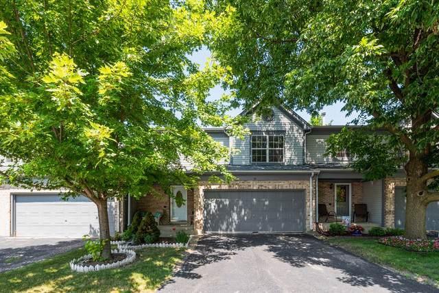 30 Oxford Court, Algonquin, IL 60102 (MLS #10521568) :: Ryan Dallas Real Estate