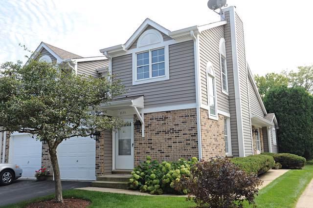 825 N Cove Drive, Palatine, IL 60074 (MLS #10521637) :: Ani Real Estate