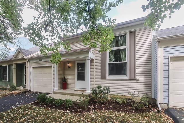 234 W Dresden Avenue, Palatine, IL 60067 (MLS #10521680) :: Ani Real Estate