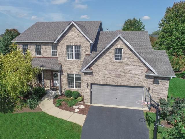 17 Lake Ridge Court, South Elgin, IL 60177 (MLS #10521898) :: Angela Walker Homes Real Estate Group