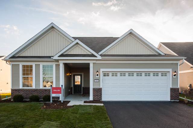 2065 Samantha Joy Lane, Bolingbrook, IL 60440 (MLS #10522030) :: Ani Real Estate