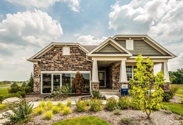 2061 Samantha Joy Lane, Bolingbrook, IL 60440 (MLS #10522043) :: Ani Real Estate