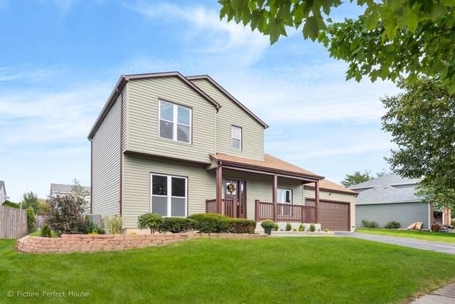 394 Twin Creeks Drive, Bolingbrook, IL 60440 (MLS #10522055) :: Ani Real Estate