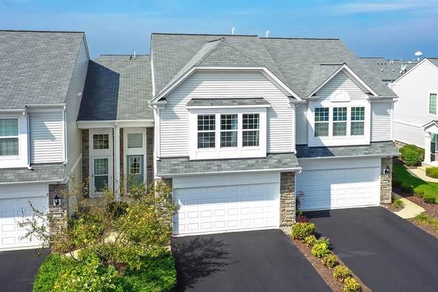 265 Devoe Drive, Oswego, IL 60543 (MLS #10522061) :: O'Neil Property Group