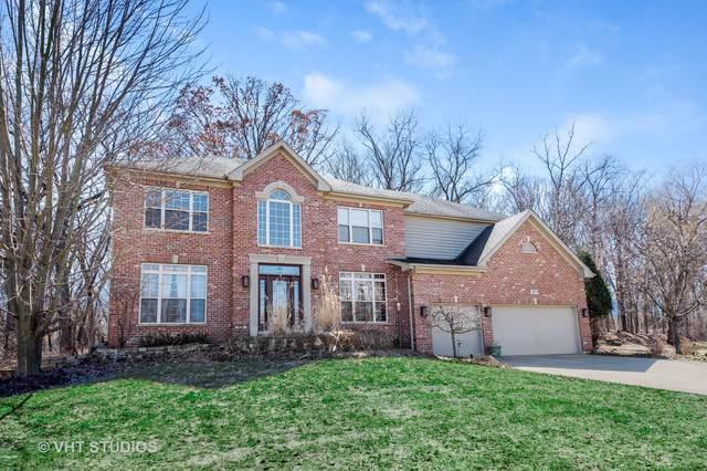 641 W Ruhl Road, Palatine, IL 60074 (MLS #10522089) :: Ani Real Estate