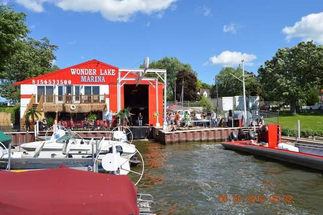 4019 Lake Shore Drive, Wonder Lake, IL 60097 (MLS #10522122) :: John Lyons Real Estate