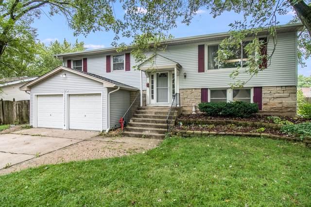 180 N Schmidt Road, Bolingbrook, IL 60440 (MLS #10522197) :: Ani Real Estate