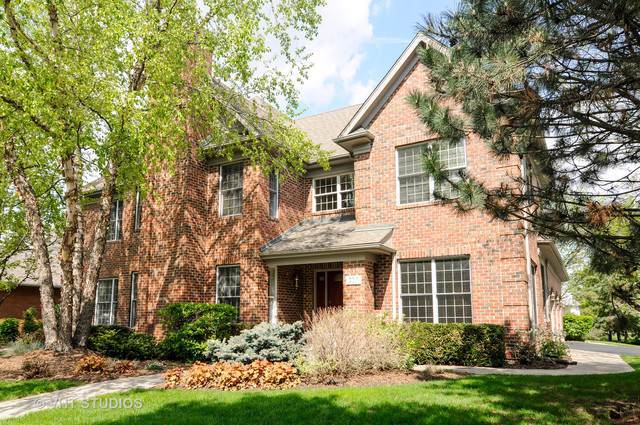 307 N Westminster Drive, Palatine, IL 60067 (MLS #10522337) :: Ani Real Estate