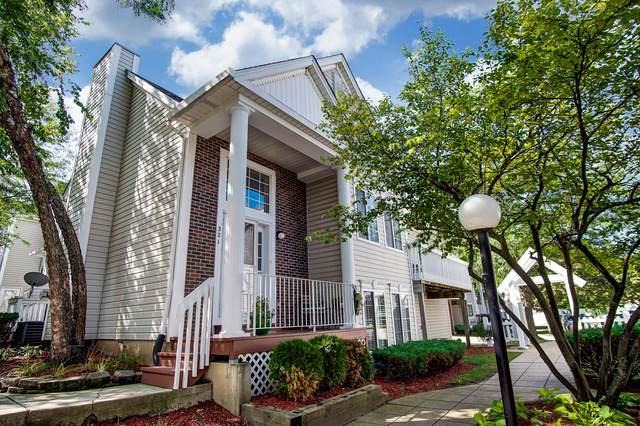 321 Autumn Wind Court, Bolingbrook, IL 60440 (MLS #10522388) :: Ani Real Estate
