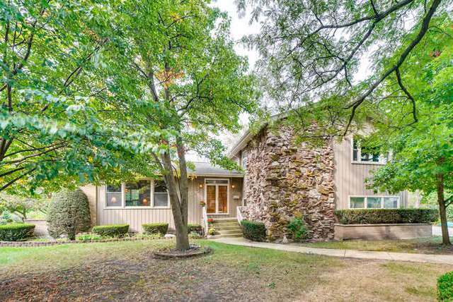 1032 62nd Court, Downers Grove, IL 60516 (MLS #10522449) :: Ani Real Estate