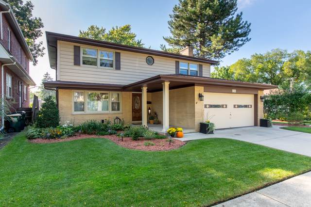 1304 S Greenwood Avenue, Park Ridge, IL 60068 (MLS #10522457) :: Ani Real Estate