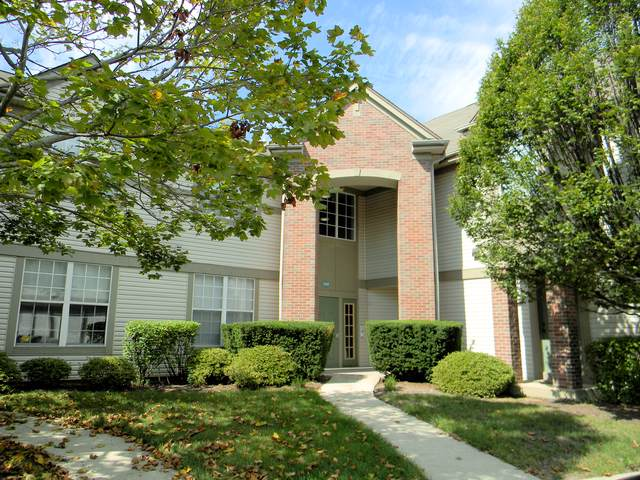 1595 Carlemont Lane B, Crystal Lake, IL 60014 (MLS #10522570) :: Ani Real Estate