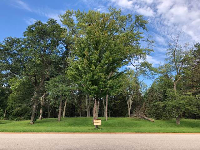 Lot 13 Abbeywoods Drive, Barrington, IL 60010 (MLS #10522602) :: Lewke Partners