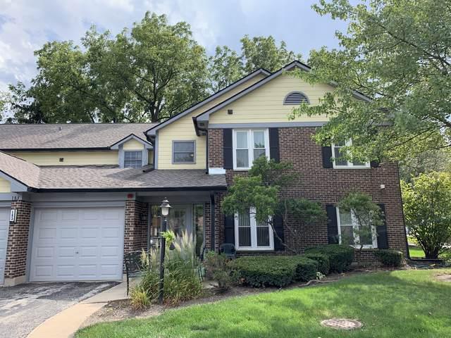 183 Grove Avenue C, Des Plaines, IL 60016 (MLS #10522637) :: Baz Realty Network | Keller Williams Elite