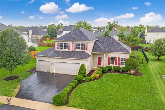 1103 Western Lane, Yorkville, IL 60560 (MLS #10522654) :: O'Neil Property Group