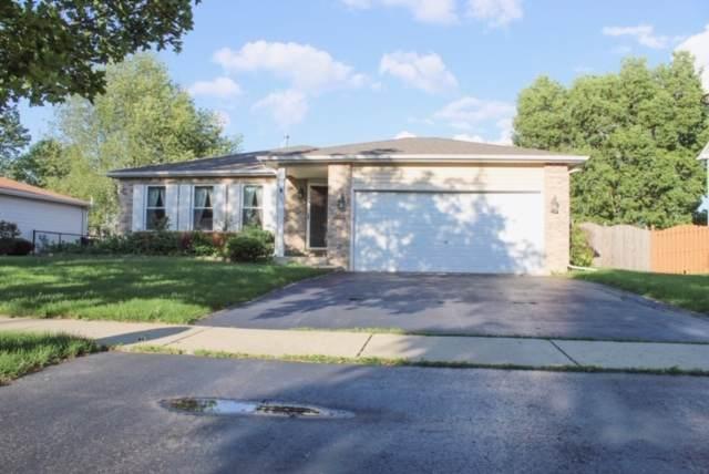 192 Chestnut Lane, Bolingbrook, IL 60490 (MLS #10522802) :: Ani Real Estate