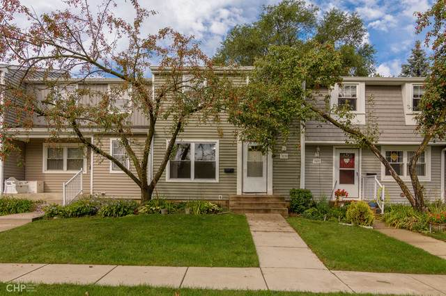 1830 Carlisle Court, Schaumburg, IL 60193 (MLS #10522931) :: Property Consultants Realty