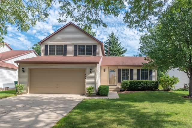 528 Crown Point Court, Buffalo Grove, IL 60089 (MLS #10522974) :: Berkshire Hathaway HomeServices Snyder Real Estate