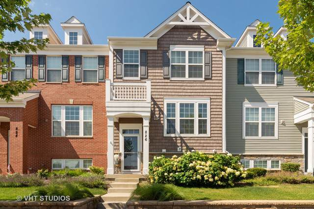 826 E Wing Street, Arlington Heights, IL 60004 (MLS #10522985) :: Property Consultants Realty