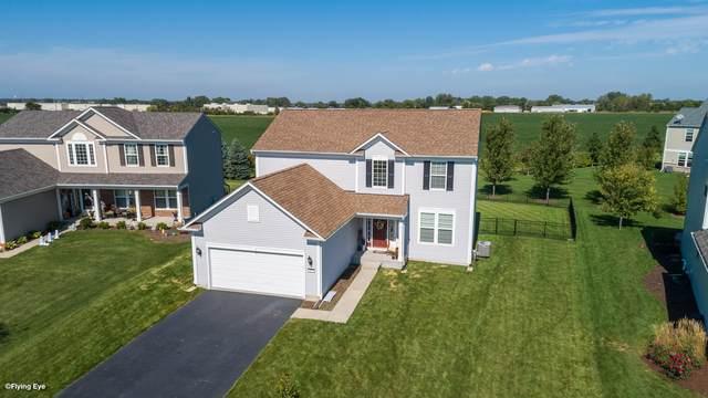 105 Chapin Way, Oswego, IL 60543 (MLS #10523325) :: O'Neil Property Group