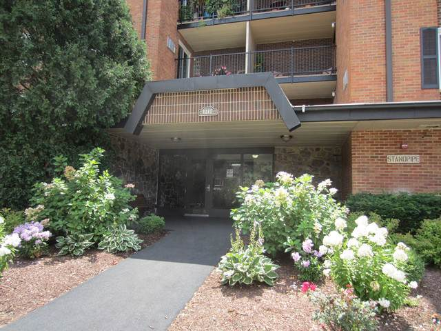 1217 S Old Wilke Road #201, Arlington Heights, IL 60005 (MLS #10523412) :: Berkshire Hathaway HomeServices Snyder Real Estate