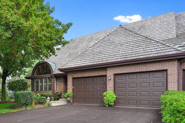 711 Ruth Lake Court, Hinsdale, IL 60527 (MLS #10523738) :: Century 21 Affiliated