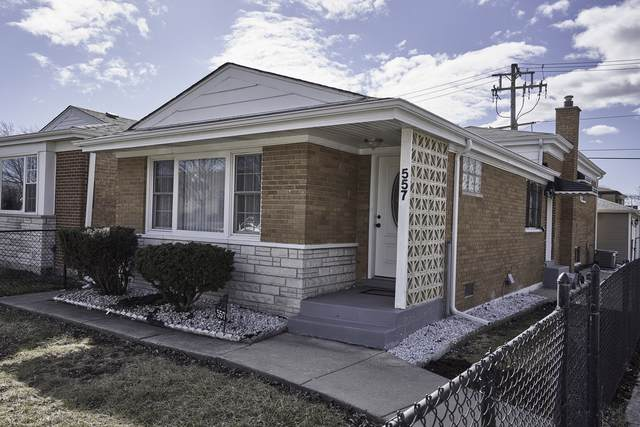 557 W 95TH Street, Chicago, IL 60628 (MLS #10523776) :: Janet Jurich Realty Group