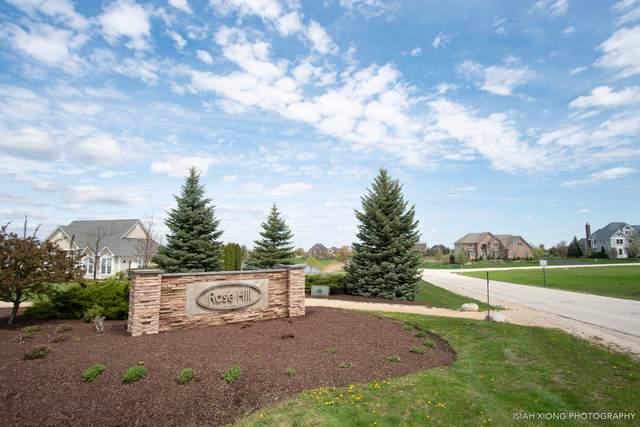 Lot 16 Savanna Court, Yorkville, IL 60560 (MLS #10524069) :: Berkshire Hathaway HomeServices Snyder Real Estate