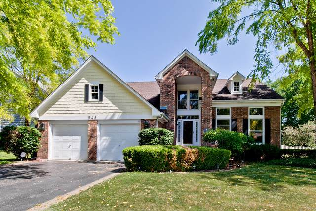 548 Williams Way, Vernon Hills, IL 60061 (MLS #10524134) :: Janet Jurich Realty Group