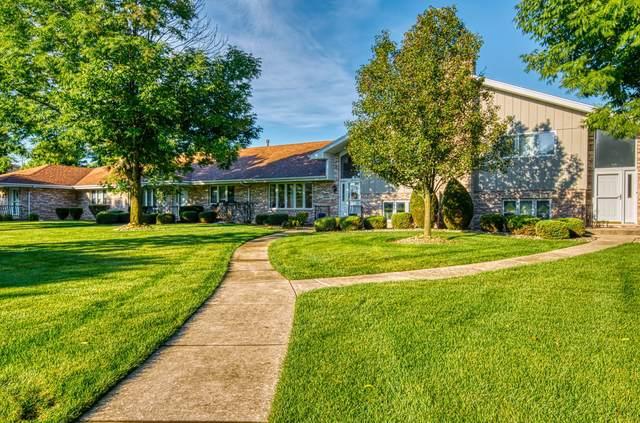 10853 Minnesota Court, Orland Park, IL 60467 (MLS #10524751) :: Baz Realty Network | Keller Williams Elite