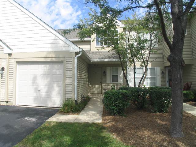 2919 Rutland Circle #203, Naperville, IL 60564 (MLS #10524858) :: Berkshire Hathaway HomeServices Snyder Real Estate