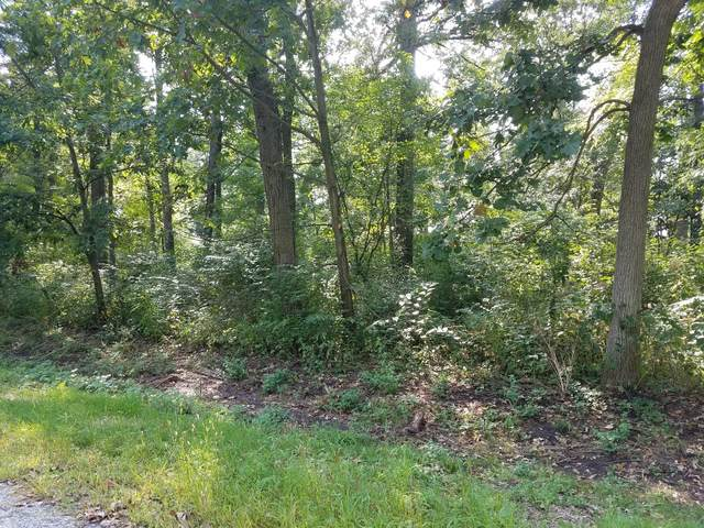 Lot 3 Hickory Circle, Sycamore, IL 60178 (MLS #10525004) :: Baz Realty Network | Keller Williams Elite