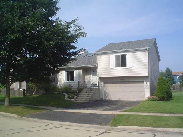 2536 Brunswick Circle, Woodridge, IL 60517 (MLS #10525295) :: The Mattz Mega Group