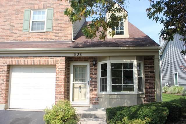 230 Carlisle Avenue, Westmont, IL 60559 (MLS #10525429) :: The Mattz Mega Group
