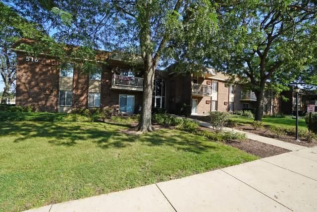 516 N Wilke Road #203, Palatine, IL 60074 (MLS #10525448) :: Century 21 Affiliated