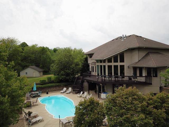 27225 Virginia Drive, Danville, IL 61834 (MLS #10525743) :: Property Consultants Realty