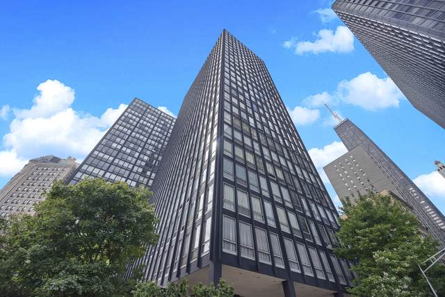 880 N Lake Shore Drive 9AB, Chicago, IL 60611 (MLS #10525784) :: Property Consultants Realty