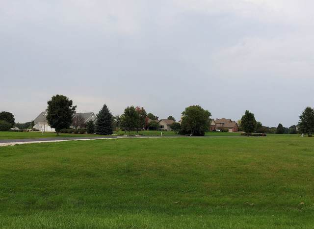 LOT 49 Stonecrest Drive, Elgin, IL 60124 (MLS #10526020) :: Janet Jurich Realty Group