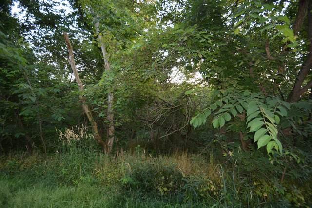 lot 6 Aberdeen Road, Frankfort, IL 60423 (MLS #10526146) :: Littlefield Group