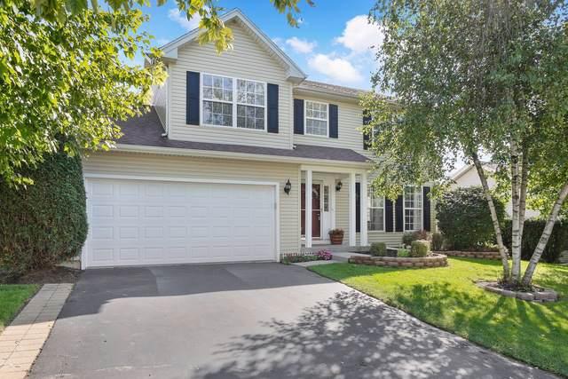 304 Vana Drive, Carpentersville, IL 60110 (MLS #10526352) :: Janet Jurich Realty Group