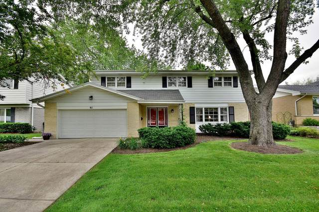 811 S Waverly Place, Mount Prospect, IL 60056 (MLS #10526414) :: Janet Jurich Realty Group