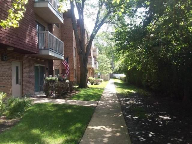 713 W Central Road A4, Mount Prospect, IL 60056 (MLS #10526478) :: Janet Jurich Realty Group