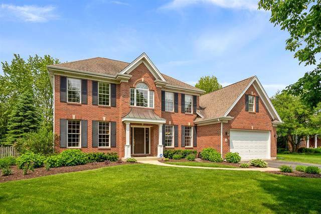 9 N Daniels Drive, Batavia, IL 60510 (MLS #10528532) :: O'Neil Property Group