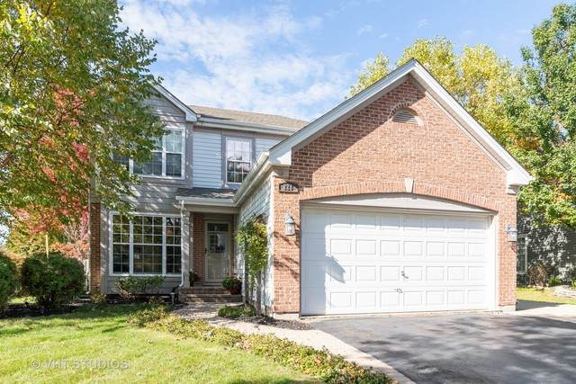 228 Mayfair Lane, South Elgin, IL 60177 (MLS #10529309) :: Baz Network | Keller Williams Elite