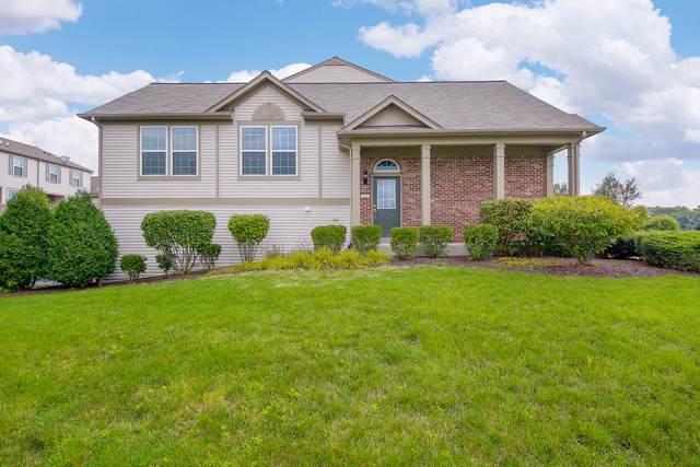 220 Devoe Drive, Oswego, IL 60543 (MLS #10529652) :: O'Neil Property Group